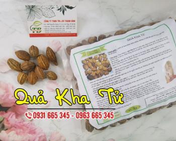 Bột lá neem [công dụng cách dùng] mua ở đâu nguyên chất?