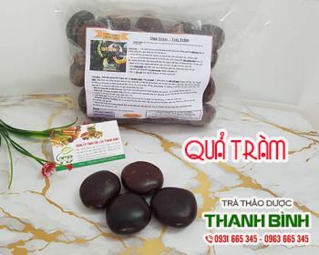 Mua bán quả tràm tại quận Long Biên giúp điều trị viêm dạ dày rất tốt