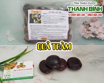 Mua bán quả tràm tại Hà Nội uy tín chất lượng tốt nhất