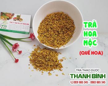 Mua bán trà hoa mộc tại huyện Sóc Sơn giúp điều trị hôi miệng, viêm lợi
