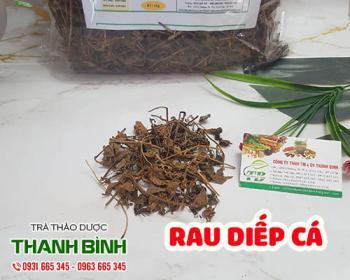 Mua bán rau diếp cá ở quận Bình Tân giúp da dẻ mịn màng sạch khuẩn