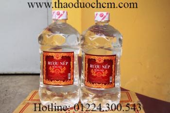 Mua bán Rượu trắng (ngâm rượu thuốc) tại TP HCM uy tín