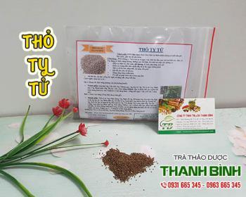 Mua bán thỏ ty tử tại TPHCM uy tín chất lượng tốt nhất