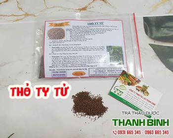 Mua bán thỏ ty tử ở quận Tân Phú giúp cường gân mạnh cốt và bồi bổ