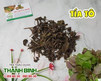Mua bán tía tô ở huyện Hóc Môn giúp trị viêm loét dạ dày và hen suyễn