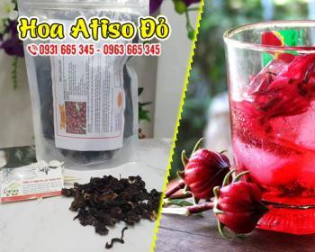 Công dụng của cây bụp giấm (hoa atiso đỏ) đối với hệ tiêu hóa và sức khỏe