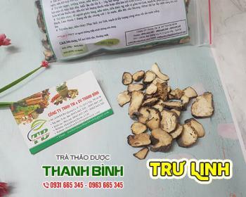 Mua bán trư linh ở quận Bình Tân có tác dụng cải thiện chứng nôn mửa