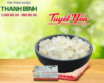 Mua bán tuyết yến ở quận Tân Bình giúp bổ dưỡng cho cơ thể, giúp nhớ lâu