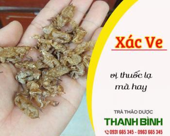 Mua bán xác ve ở huyện Bình Chánh giúp sáng mắt, ngăn ngừa viêm kết mạc