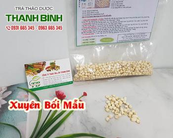 Mua bán xuyên bối mẫu ở quận Tân Phú hỗ trợ thanh nhiệt thải độc tiêu viêm